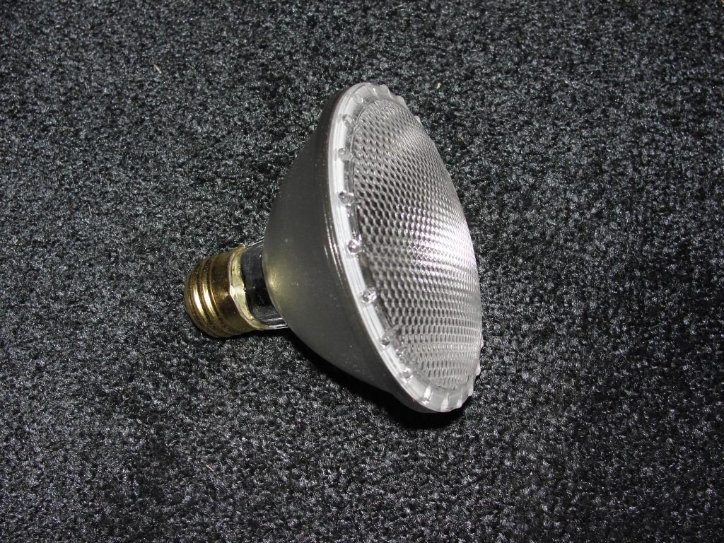 PAR 30 Light Bulb - 75 Watt