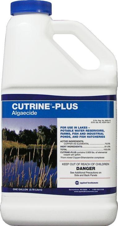 Cutrine Plus Algaecide - 1 gal