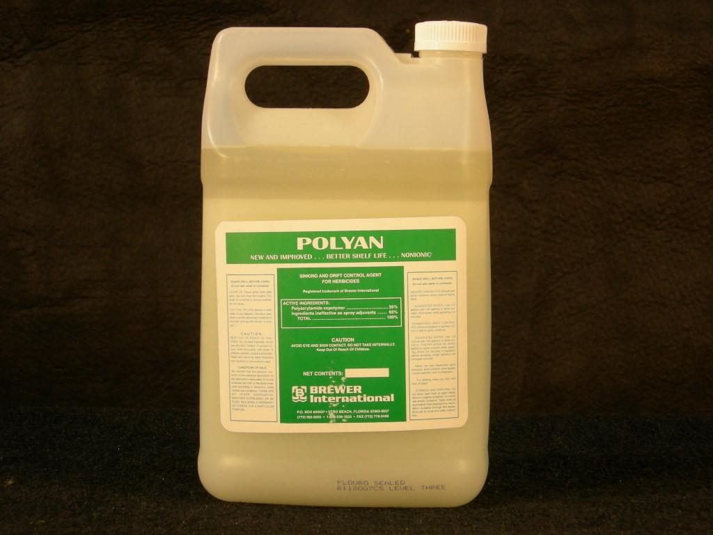 Polyan